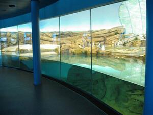 Projekt Zoologischer Garten realisiert durch die F. R. Hauk Stahl- und Leichtmetallbau GmbH